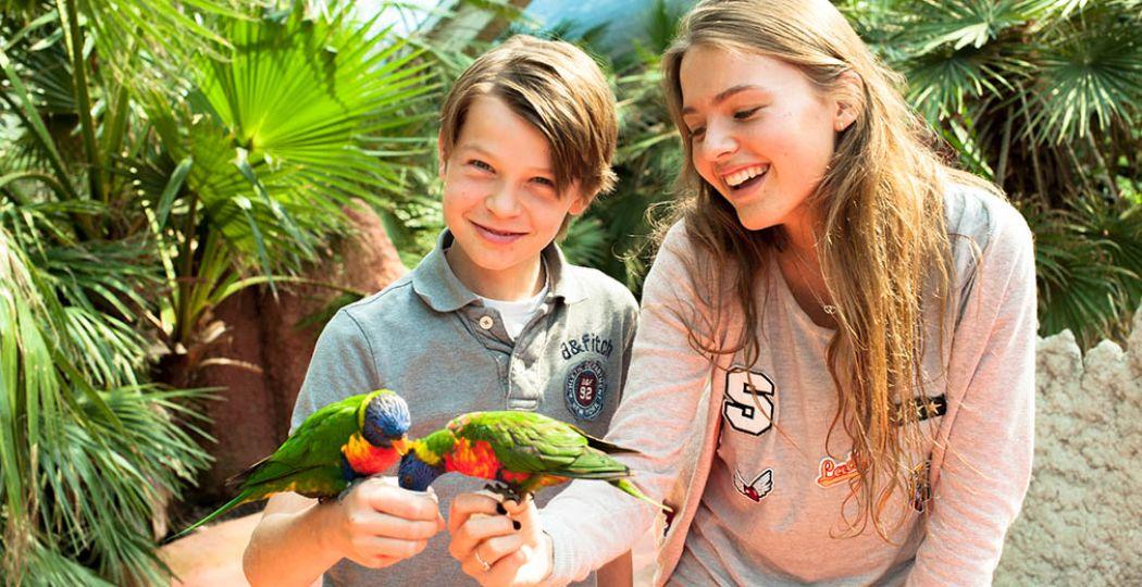 Kom lori's voeren in Vogelpark Avifauna! Via DagjeWeg.NL Tickets krijg je 30% korting op je kaartje. Foto: Vogelpark Avifauna.