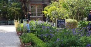 Toverachtige tuinen