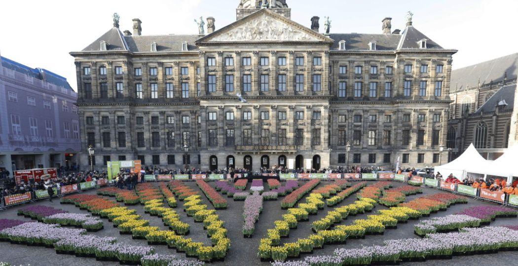 De Nationale Tulpendag is de start van het tulpenseizoen, pal voor het Paleis op de Dam. Kom plukken! Foto: Tulpentijd.nl/VidiPhoto.
