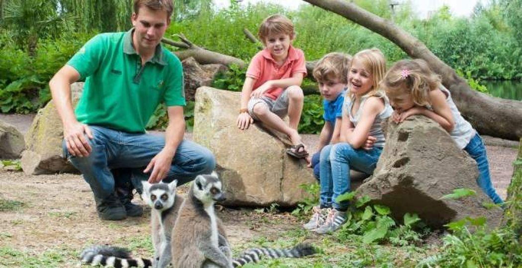 Ga met de dierenverzorgers op pad door het park! Foto: Avifauna