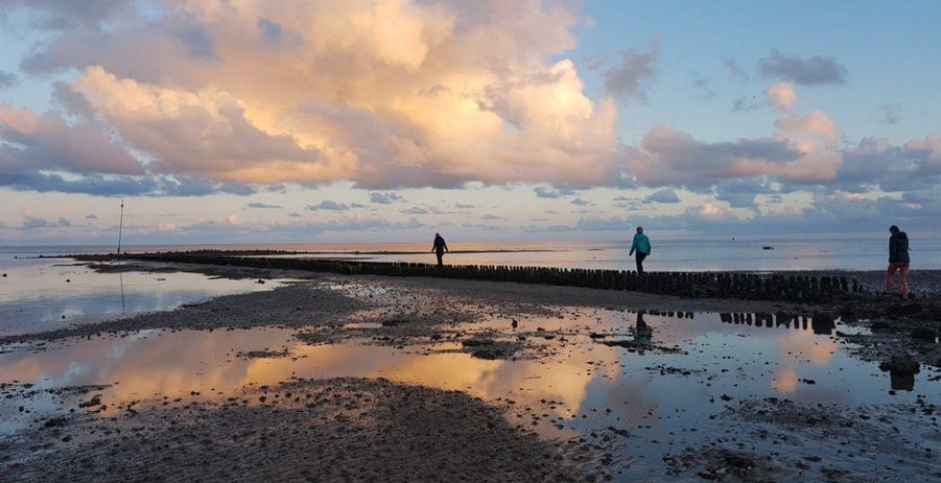 Ontdek hoe mooi en uniek UNESCO Werelderfgoed de Waddenzee is. Foto: Nikki Arendse