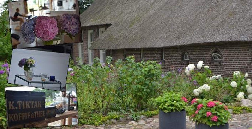 Bed & breakfast, theeschenkerij en galerie De Vijf Suites: oud en nieuw door elkaar, nostalgie en luxe gaan hand in hand. Foto: DagjeWeg.NL
