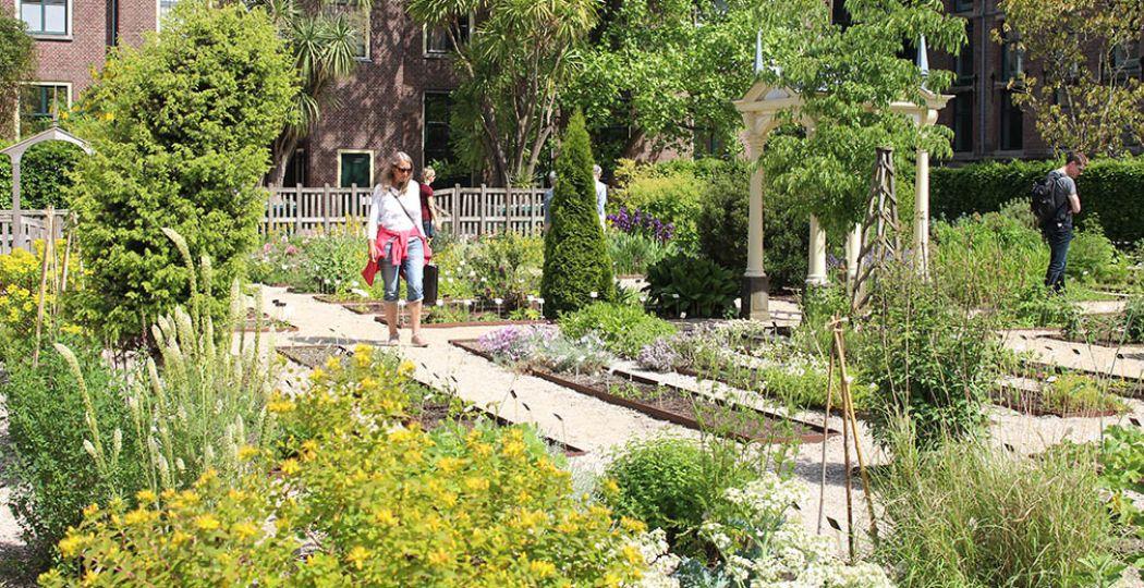 Doe een lekker groen dagje uit en bezoek een kruidentuin, pluktuin of stadstuin. Foto: DagjeWeg.NL.