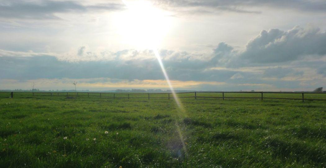 Prachtig groen, heerlijke rust en avontuurlijke natuurgebieden. Er gaat niets boven Groningen, Friesland en Drenthe! Foto: DagjeWeg.NL.