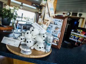 Spot een zeehond! Foto: MS Onrust.
