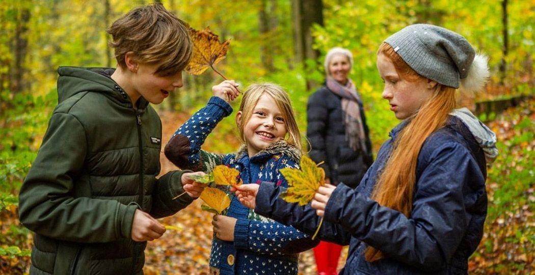 Ontdek hoe mooi de natuur is in Nederland tijdens de Week van het Landschap en doe mee met de leuke activiteiten. Lekker buiten bezig zijn voor iedereen. Foto: Week van het Landschap