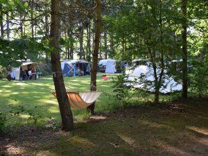 Camping het Horstmannsbos