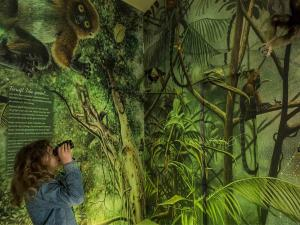 Foto: Museum Natura Docet Wonderryck © Fred Ernst