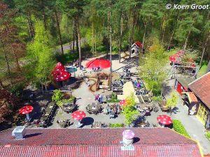 Foto: Het Grote Kabouterbos.