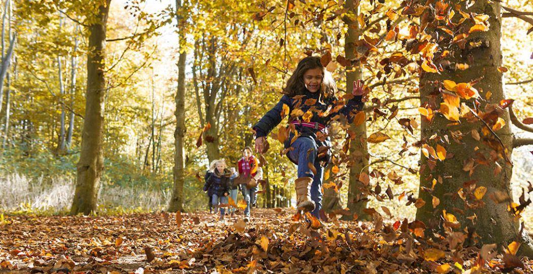 Vier de herfstvakantie in Almere. Verken bijvoorbeeld de Almeerse Stadsbossen met een boswachter. Foto: Almere City Marketing.