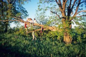 Heerlijk Ravotten In Een Natuurspeeltuin Dagjewegnl