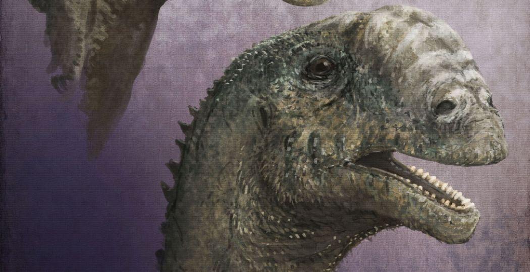 De eerste expositie met dinokunst in Nederland is verlengd en voorlopig nog even te zien in Teylers Museum. Met onder andere dit hedendaags dinoportret van Mark Witton. Foto: Mark Witton, Europasaurus holgeri, 2016