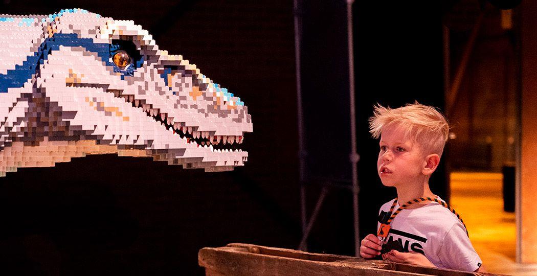 Beleef de dag van je leven in de DinoFabriek. Een echte experience met theater, doe-activiteiten en natuurlijk een heleboel dino's. Allemaal opgebouwd uit zo'n 2 miljoen steentjes. Foto: De DinoFabriek © Mira Meijer