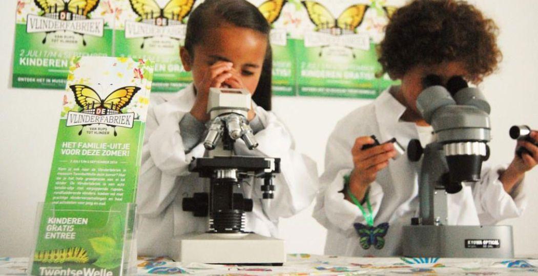 Door een microscoop zie je zelfs de kleinste rupsjes! Foto: Museum Twentsewelle.