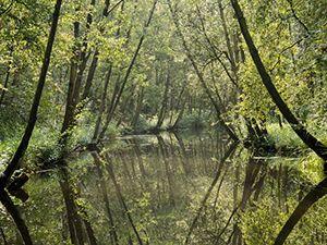 Foto: Natuurmonumenten