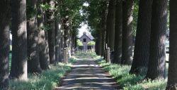 Fietsen rondom Soest