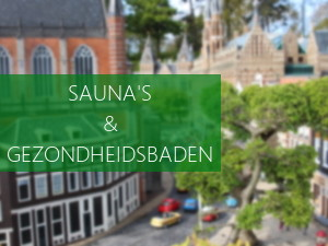 Wellness & Beauty Sauna De Woudfennen