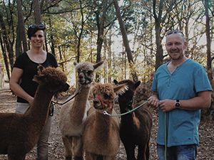 Foto: Alpaca Ranch d'n Achterhoek.