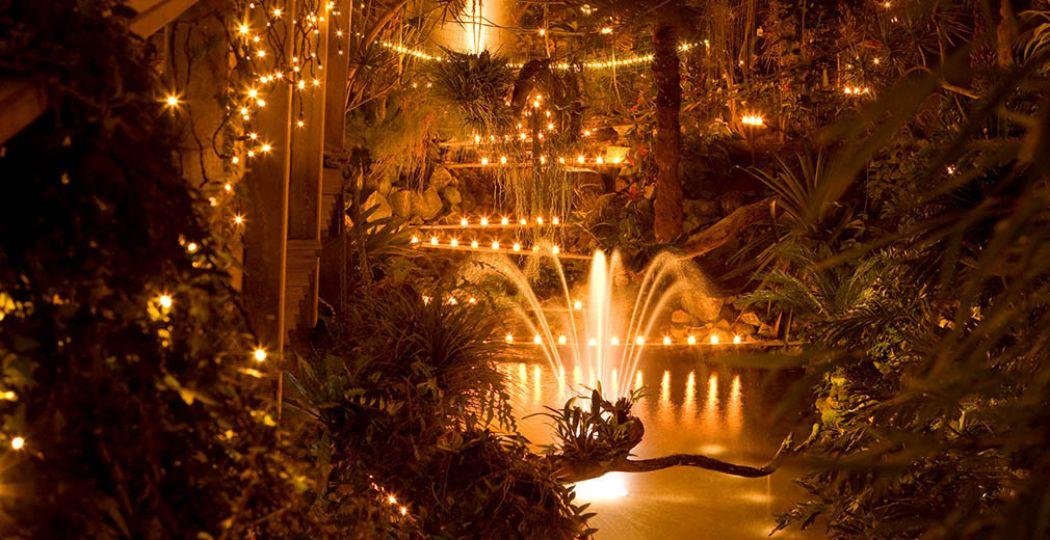 Vergaap je aan duizenden lichtjes tijdens de kaarsjesavonden. Foto: Orchideeën Hoeve.