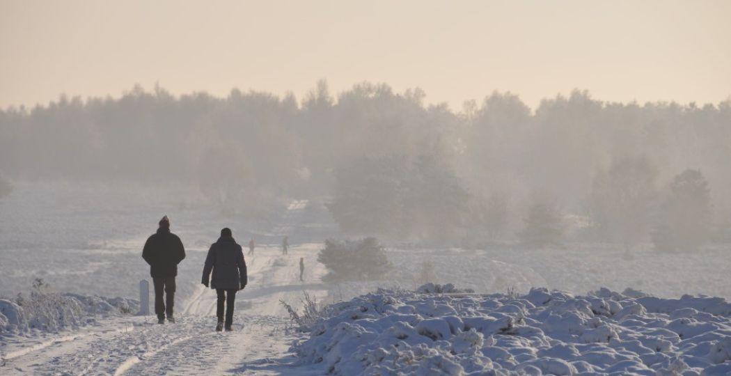 De Nederlandse natuur is prachtig in de winter. Foto: Staatsbosbeheer