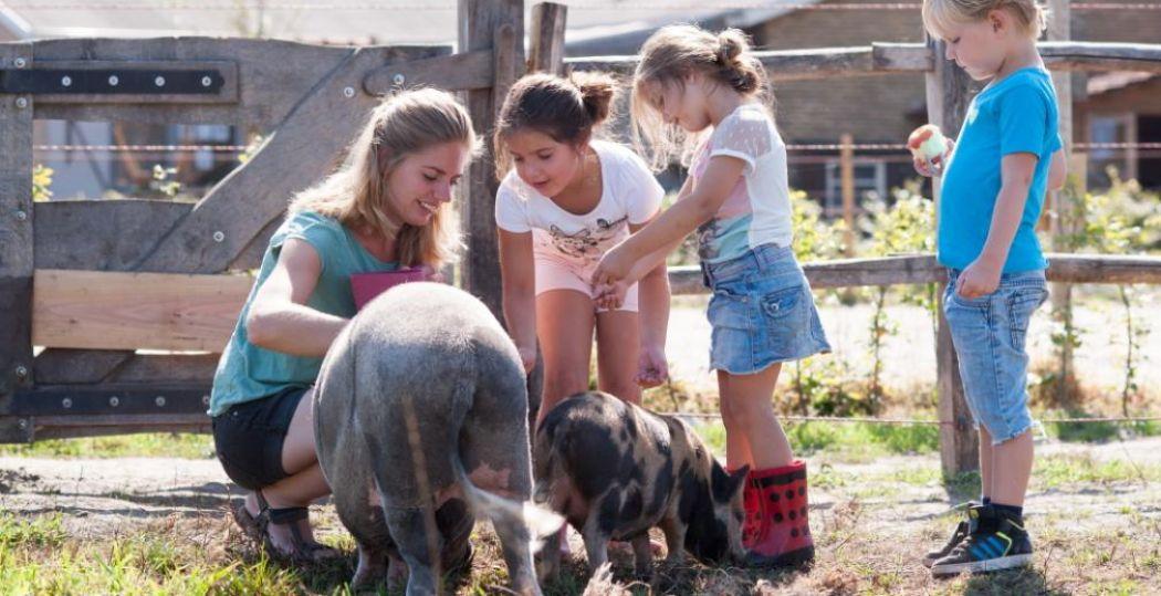 Genieten van het boerenleven. Foto: FarmCamps