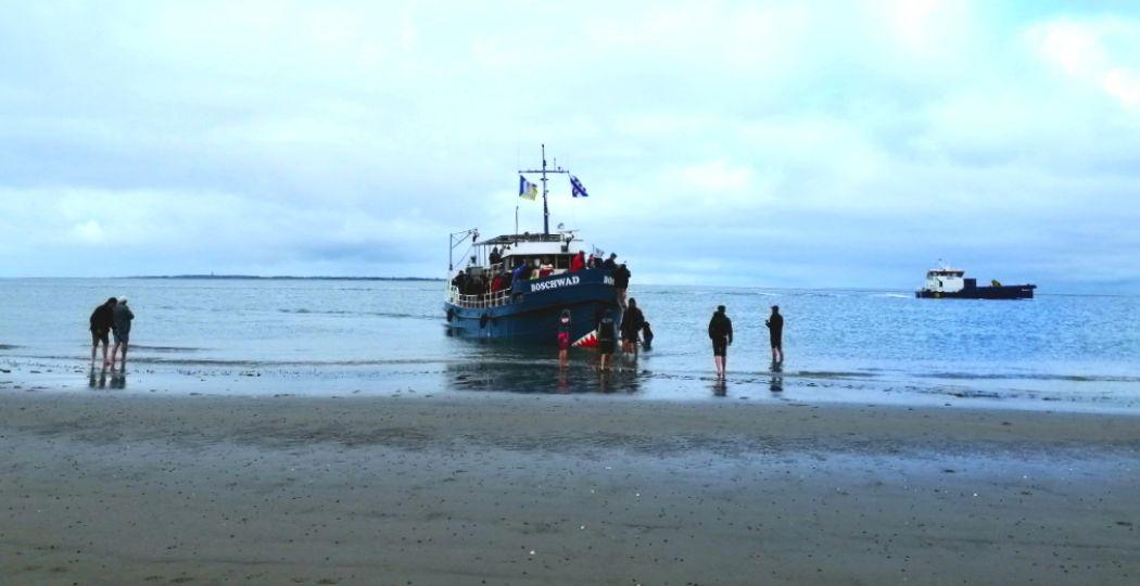 Stap aan boord van de MS Boschwad voor een Zeehondentocht met een Engelsmanplaat Excursie. Foto: DagjeWeg.NL.