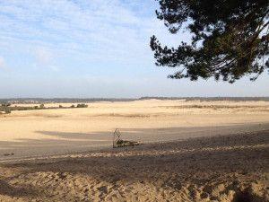 Mos Loonse en Drunense duinen