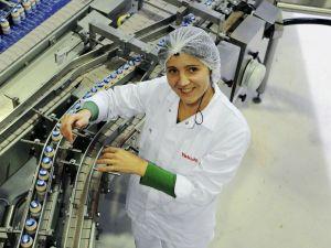Bekijk hoe Yakult geproduceerd wordt. Foto: Yakult.