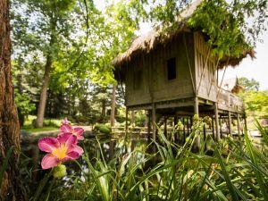 Verwonder je in de schitterende tuinen. Foto: Kasteeltuinen Arcen.