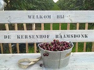 De Kersenhof Raamsdonk