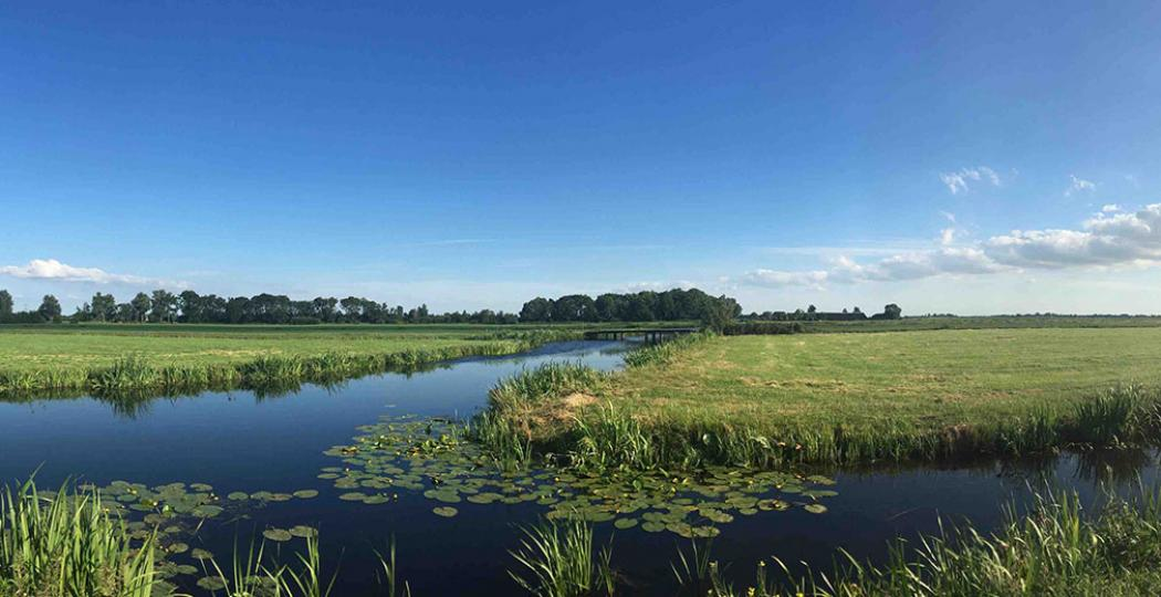 Lopen door de mooie Demmerikse polder. Op het Bellopad geniet je van weidse uitzichten over groen en water, maar slenter je ook langs een riviertje. Foto: Bellopad.nl