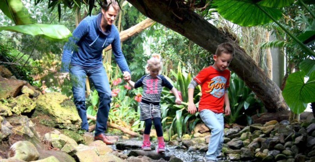Ga samen op ontdekkingstocht in het tropische regenwoud van de Orchideeën Hoeve.