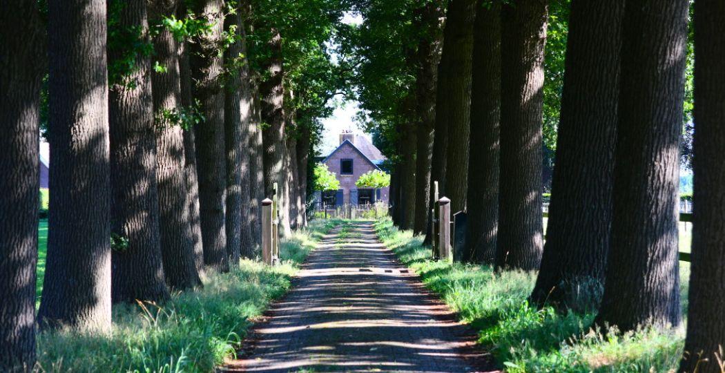 Er is zoveel te bewonderen in Soest! Foto: DagjeWeg.NL, Coby Boschma.
