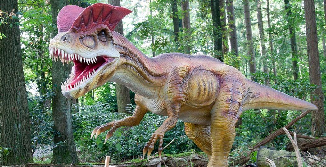 Ze brullen, bewegen en zijn gigantisch! Kom deze herfstvakantie dino's kijken in Burgers' Zoo. Foto: Koninklijke Burgers' Zoo.