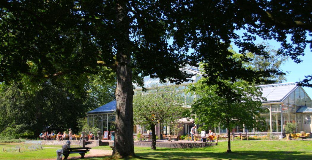 Het Cantonspark, met achter de bomen de Wintertuin Experience. Foto: DagjeWeg.NL, Coby Boschma.