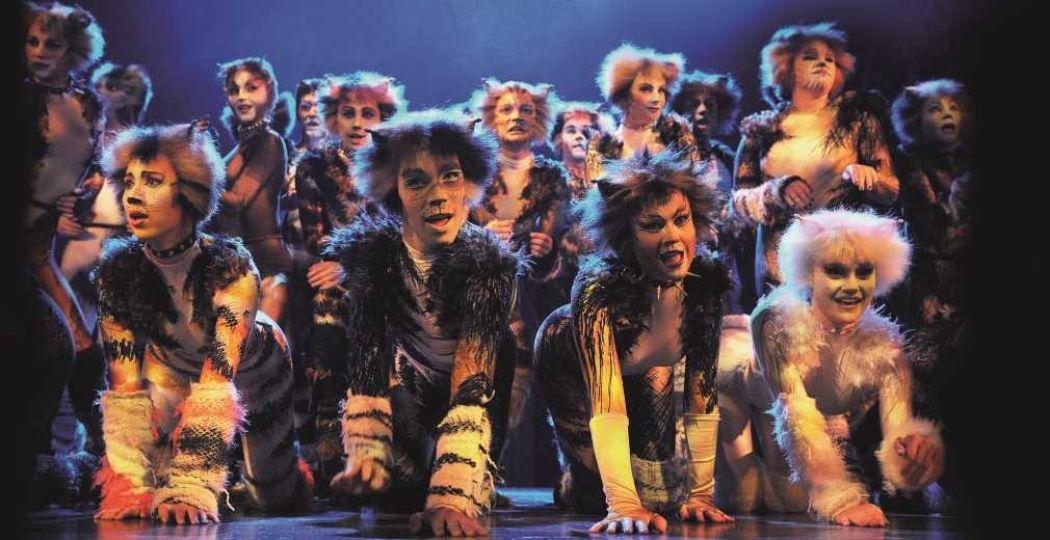 De musicalklassieker bestaat al 35 jaar. Foto: Cats