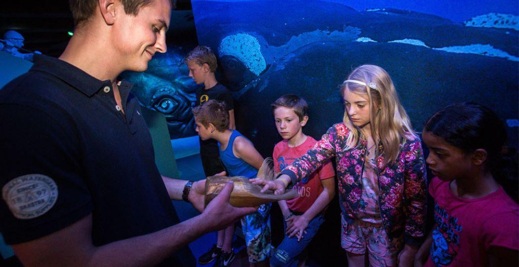 Ontdek alles over het grootste dier op aarde tijdens de Walvisweken in Het Scheepvaartmuseum.