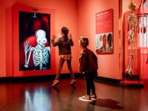 Spannend en interactief. Foto: Discovery Museum