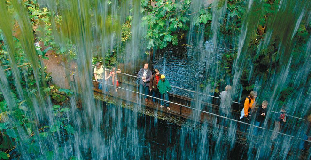 Ga op avontuur langs de waterval in de Bush van Burgers' Zoo. Foto: Koninklijke Burgers' Zoo.