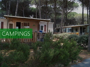 Watersportcamping De Bearshoeke