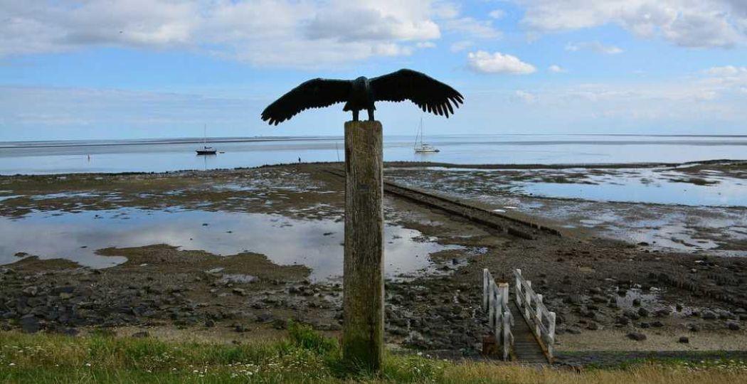 'Vlieland shore at low tide (Netherlands 2015)'. Foto:  paularps . Licentie:  Sommige rechten voorbehouden . Bron:  Flickr.com .