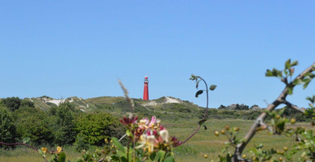 Even weg in eigen land. Vier vakantie met zicht op zee, in een huisje aan de Hollandse kust. Foto: DagjeWeg.NL.