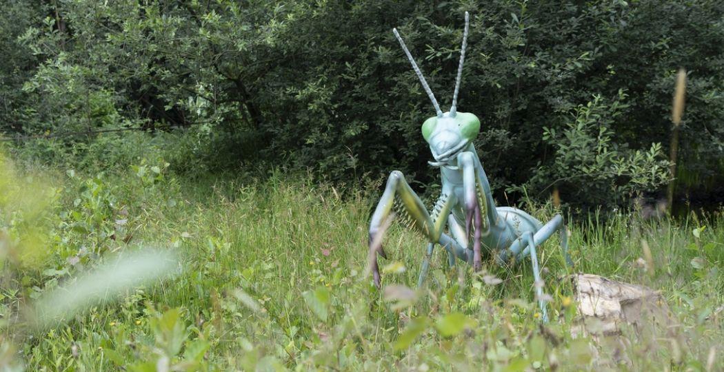 Wie durft tussen metershoge insecten te wandelen, die ook nog eens bewegen en geluid maken? Foto: Big Insects © Tim Lammers