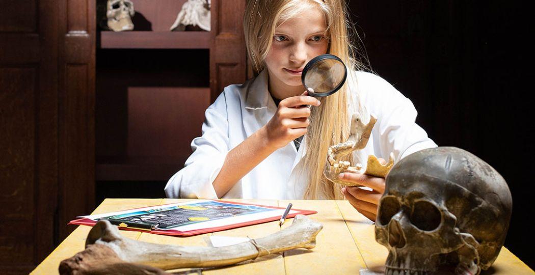 Onderzoek zelf schedels en botten tijdens de familie expositie Cold Case Gouda. Foto: Museum Gouda © Billie-Jo Krul