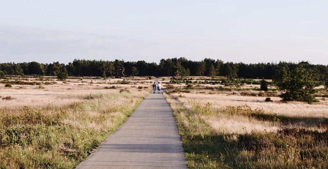 Wandel een van de nieuwste wandelpaden en ontdek weer hoe mooi Nederland is. Foto: Mathilde van Ravensberg