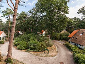 Foto: Natuurpark De Witte Bergen.