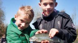 Toms Creek Vissen