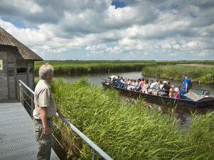 Foto: Landschap Noord-Holland © Bas van de Riet