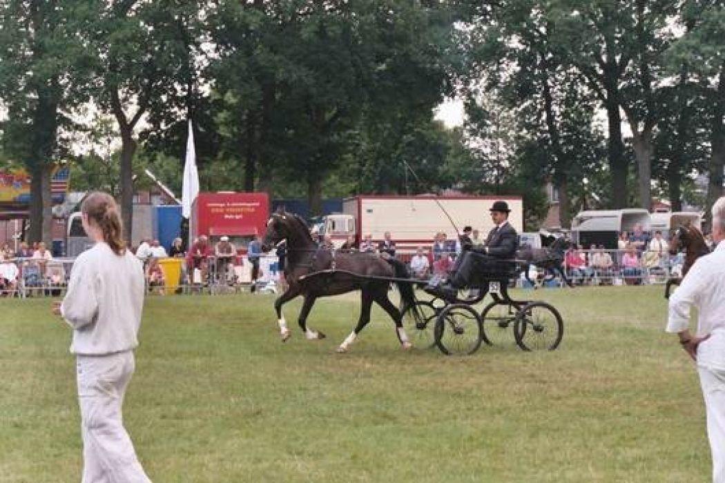 De bekende paardenshow. Foto: www.oostermoerfeest.nl