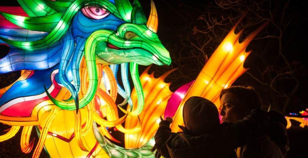 Ontdek mooie lichtgevende creaties. Foto: Jonas Verhulst © ZOO Antwerpen